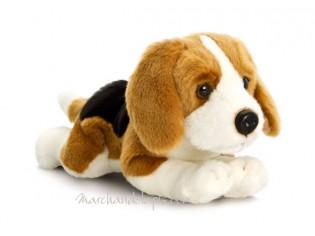 Peluche de chien Beagle, taille 35cm