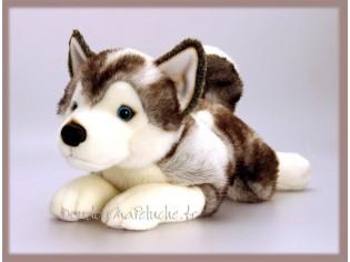 Peluche de chien Husky, Storm, taille 50cm