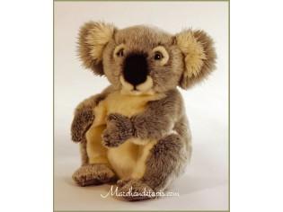 Peluche Koala 28cm