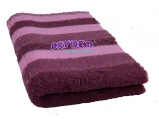 Tapis chien Drybed® antidérapant Rayures Lie de Vin