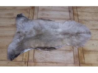Peau de mouton. Albanian 70-80cm - Ref: ALB-V-03