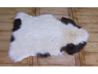 Peau de mouton. Albanian 70-80cm - Ref: ALB-V-08