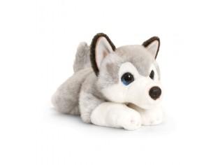 Chiot Husky Cuddle Puppy