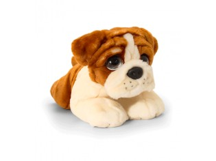 Chiot Bulldog Cuddle Puppy
